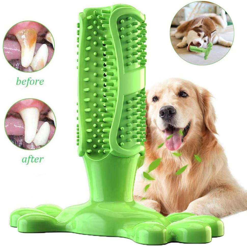 juguete cepillo de dientes para perros